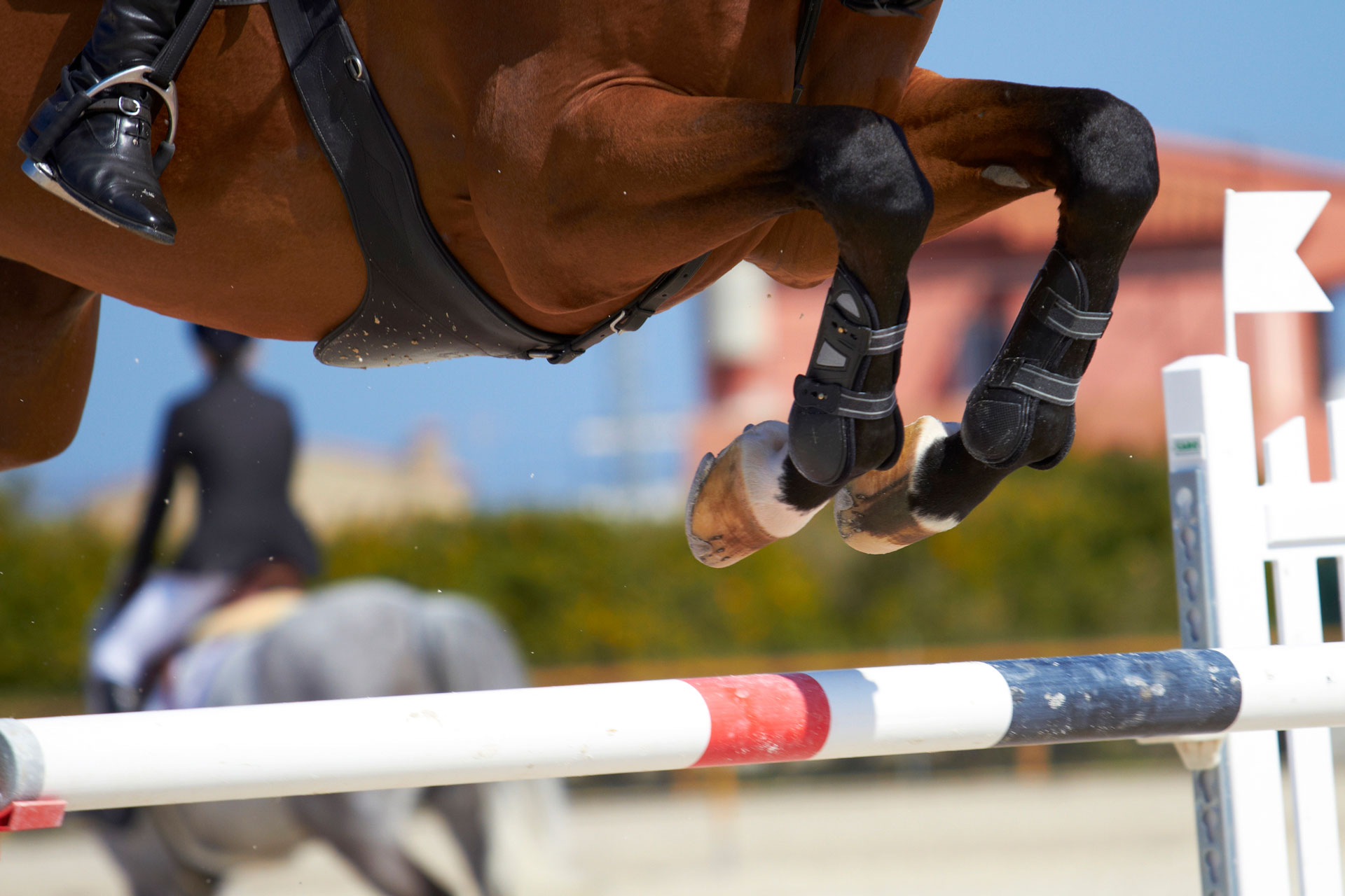 Equestrian timing systems